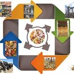 Economia circolare e mangimi