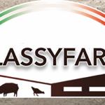 CLASSYFARM: classificazione del rischio degli allevamenti e benessere dei suini