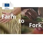 """""""Strategia dal campo alla tavola"""": conclusioni all'unanimità del Consiglio UE"""