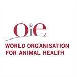 OIE: I BIG DATA COME AIUTO CONCRETO ALLA LOTTA ALLE MALATTIE ANIMALI