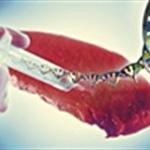 Raccolta mensile di articoli sulle frodi e sulla qualità dei prodotti alimentari
